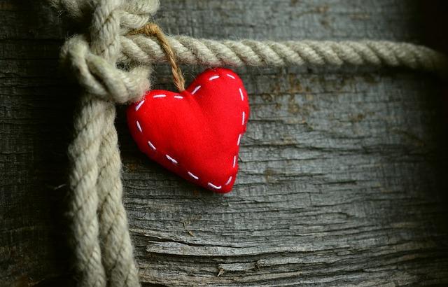 心と体の関わりに目を向けることの大切さ|退職後に気づいた心の疲労